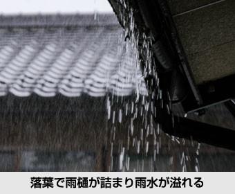 落葉で雨樋が詰まり雨水が溢れる