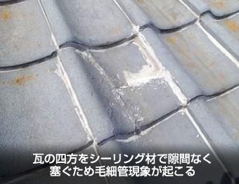 シーリング材を隙間なく埋められた瓦屋根
