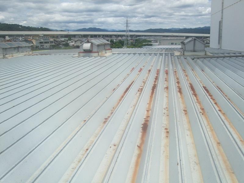 工場の屋根3