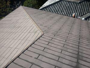 洋風屋根点検