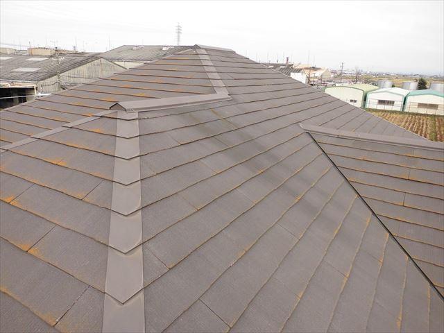名古屋市南区|屋根の診断依頼があり、行ってきました!点検の様子を写真とともにご紹介します。