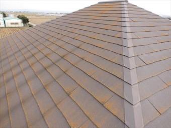 屋根の全景2