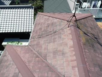 洋室雨漏りの屋根