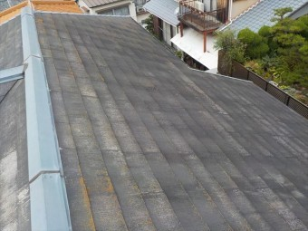 屋根の全景