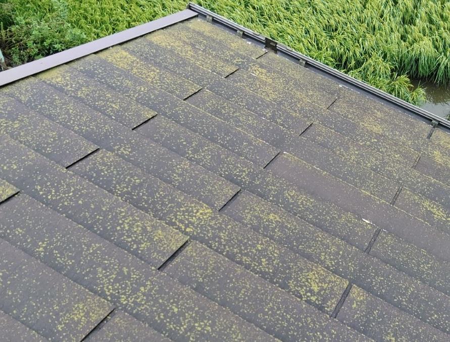 屋根の表面の劣化