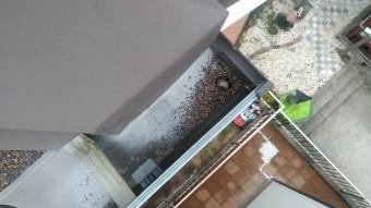雨樋に屋根材の砂