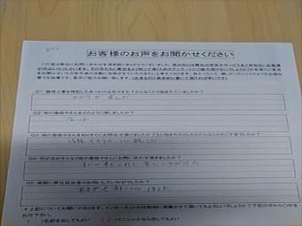 KIMG5483_R-columns2