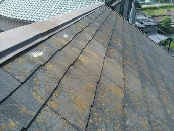 滑るスレート屋根の点検