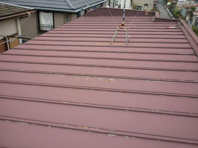 トタン屋根全景