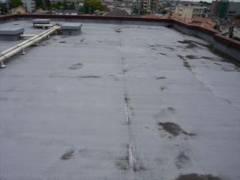 陸屋根の全景
