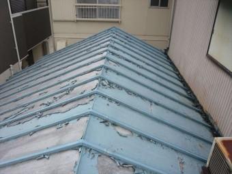 下屋根の全景
