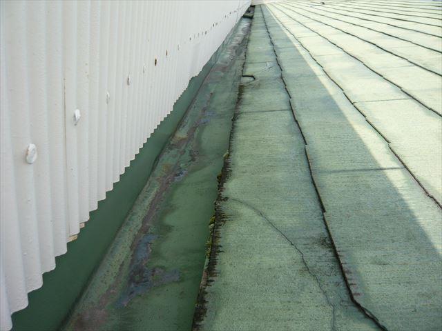 パラペット側の樋