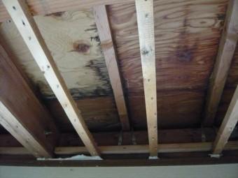 天井の下地の様子