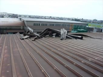 カバーした屋根の剥がれ(中間部)