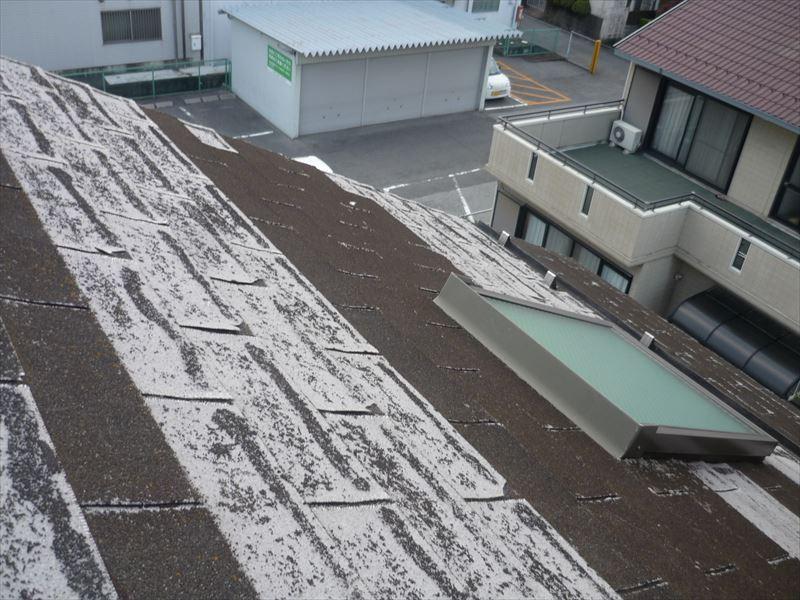 屋根(アスファルトシングル)