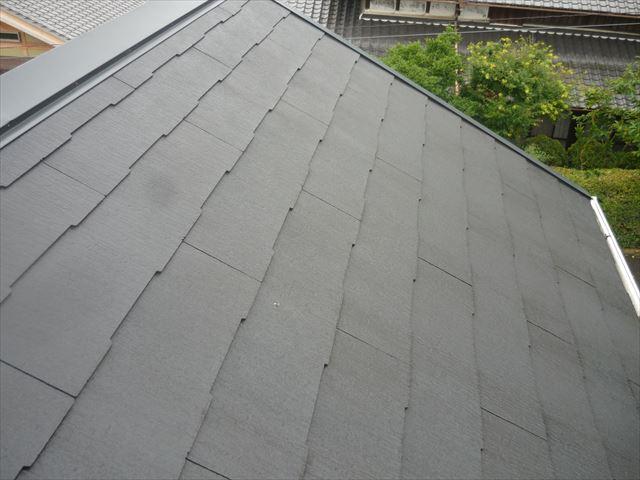 屋根全景2